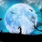 Mitos sobre el efecto de la luna llena
